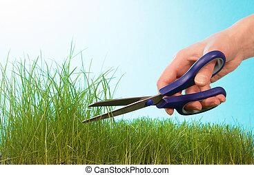 芝生, 切断, ねじれて切れる, 手