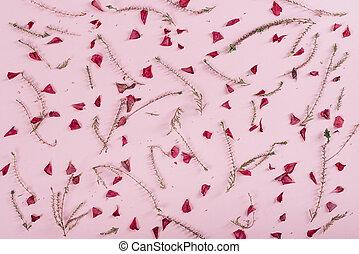 花のパターン, 上に, ピンク, バックグラウンド。