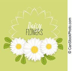 花冠, 花, 草地