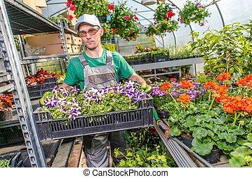 花园, 同时,, 花, 商业