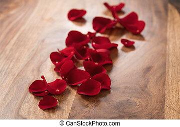 花弁, 木, バラ, 赤い背景