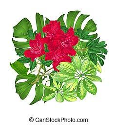 花束, ∥で∥, 熱帯の花, 赤, ツツジ, vector.eps
