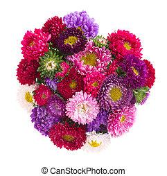 花束, の, アスター, 花