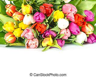 花束, の, カラフルである, 新たに, チューリップ, 花