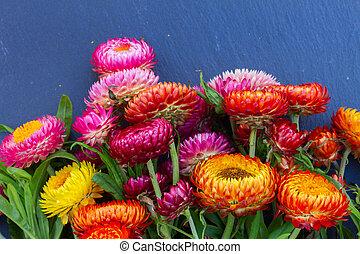 花束, の, 永遠である, 花