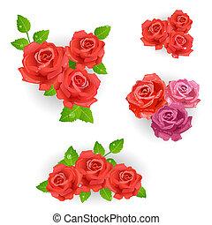 花束, ばら, セット, 赤