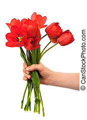 花束, チューリップ