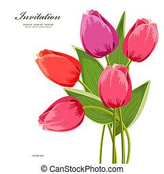 花束, チューリップ, デザイン, 隔離された, あなたの