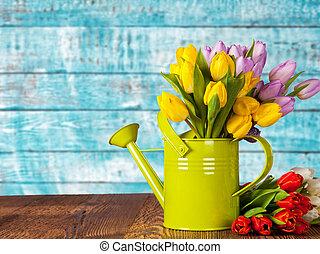 花束, チューリップ, 水まき, 有色人種, 缶