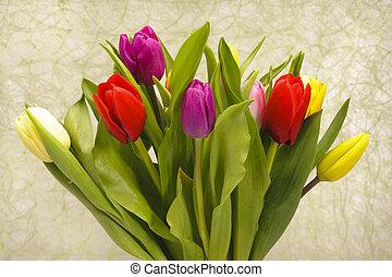 花束, チューリップ, 花, 束
