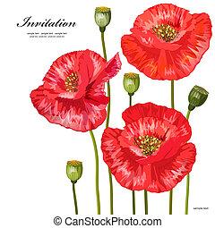 花束, デザイン, あなたの, 赤, ケシ