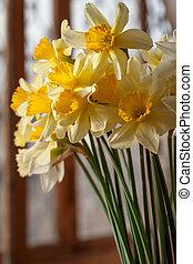花束, 美しい, ラッパズイセン, 黄色