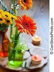 花束, 菊, gerbera