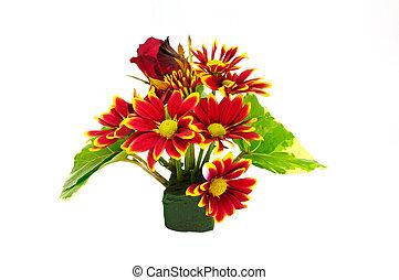 花束, 赤, 菊, 花, 隔離された, 白, 背景