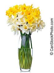 花束, 隔離された, 黄色, つぼ, スイセン, 白