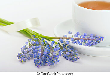 花束, muscari, 朝, お茶