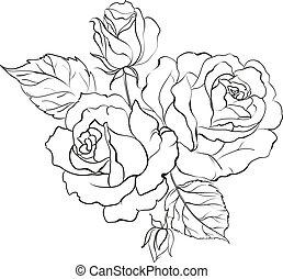 花束, roses.