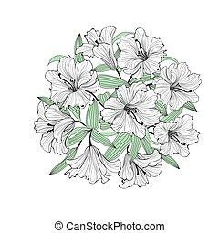 花花束, greetinng, isolated., 背景, 植物, 百合花, 卡片