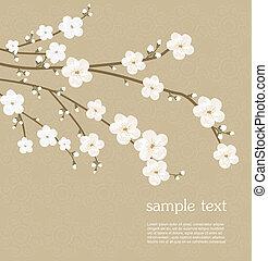 花, さくらんぼ, カード
