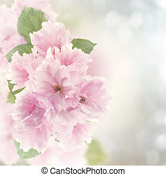花, さくらんぼ, 水彩画