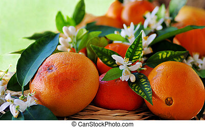花, そして, フルーツ, の, オレンジ