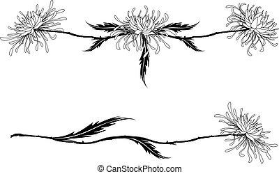 花, の, 菊