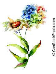 花, アジサイ, camomile