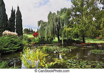 花, カラフルである, 池, 装飾用
