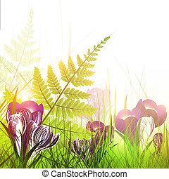 花, クロッカス, pring, 牧草地
