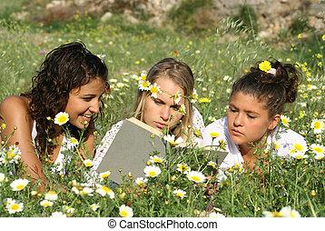 花, グループ, 健康, 女の子, フィールド, 読書, 幸せ