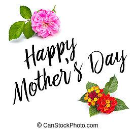 花, タイプ, 日, 母