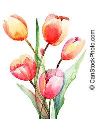 花, チューリップ, 水彩画の絵