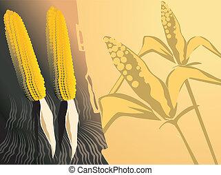 花, トウモロコシ, 背景