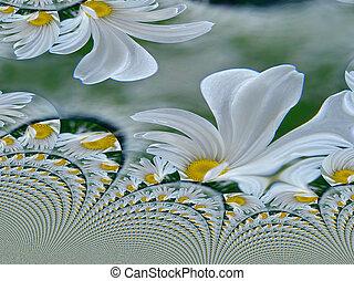 花, フラクタル