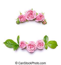 花, フレーム, ∥で∥, ピンクのバラ, 上に, a, 白, バックグラウンド。, ボーダー, の, flowers., パターン, ∥ために∥, 招待, カード