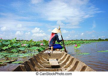 花, ベトナム語, ロータス, ボート, 村, 池, 横列