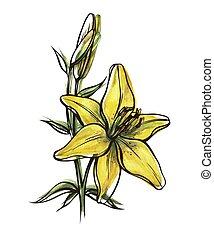 花, ユリ, つぼみ