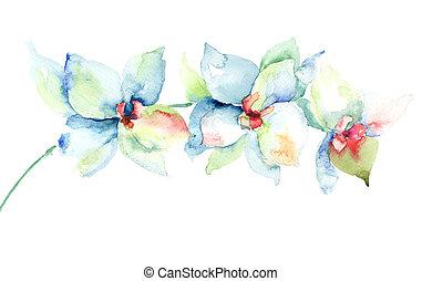 花, ラン