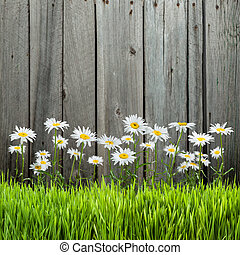 花, 上に, a, フェンス