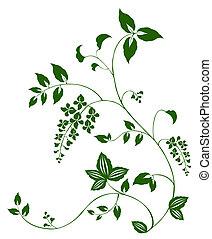 花, 以及, 葡萄樹, 圖案