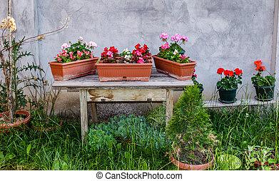 花, 古い, 庭, 木製である, ポット, テーブル