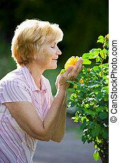 花, 古い, sentimentality., 黄色, 成長した, においをかぐ, 女性