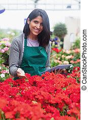 花, 園芸用品センター, 見る, 使うこと, タブレット, 労働者