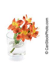 花, 在, 玻璃瓶
