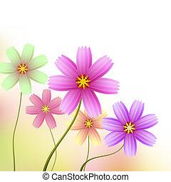 花, 壁紙, ボーダー