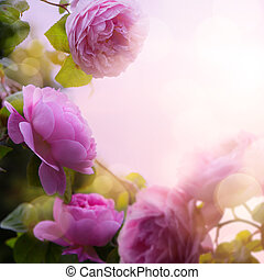 花, 庭, background;, ばら, 春, 美しい, 芸術