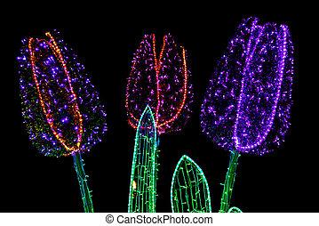 花, 建設, ランプ, 照らされた, カラフルである