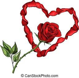 花, 愛 中心, 葉書, バラ, 隔離された, バレンタイン, 花弁, テンプレート, 日, 赤