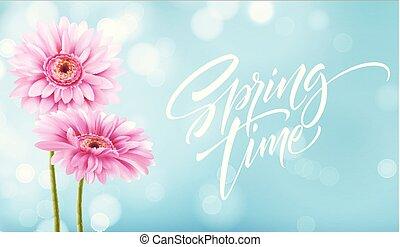 花, 春天, 描述, 矢量, 背景, 时间, lettering., gerbera