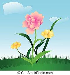 花, 春, 牧草地